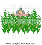 Humorous Clip Art of a Bird on a Scarecrow in a Corn Field by Djart