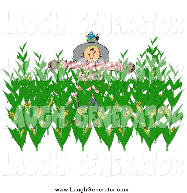 Humorous Clip Art of a Bird on a Scarecrow in a Corn Field