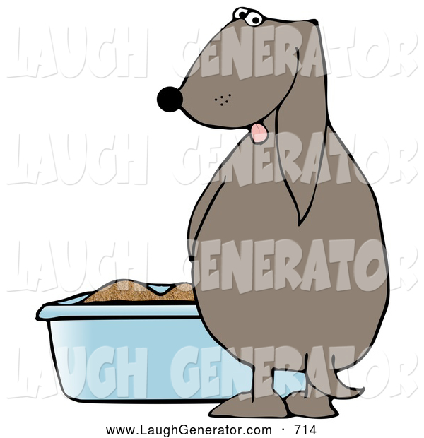 Humorous Clip Art of a Silly Brown Dog Pissing in a Litter Box